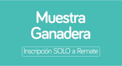 PlanilladeInscripcionVaquillonas-RemateEXPO2019